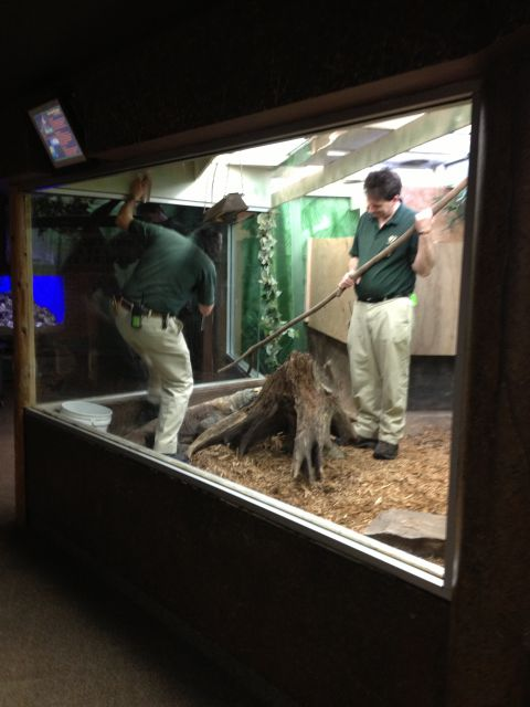 so you want to be a zookeeper keeper blog john ball zoo